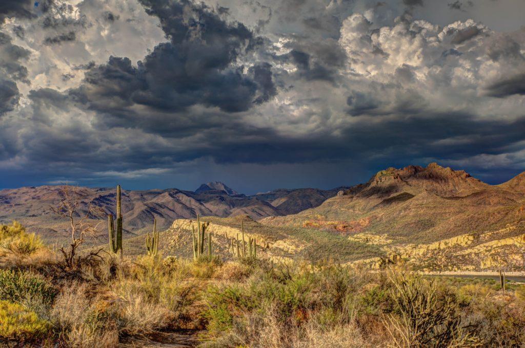 Arizona Biodiversity